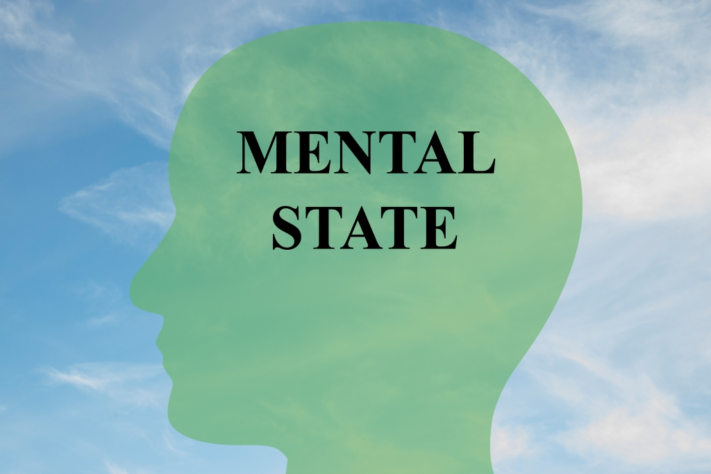 introduction to mental states in a criminal case