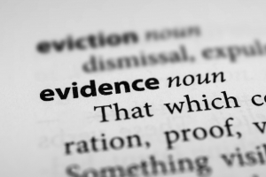 evidence and Burdens of Proof in a Criminal Case